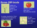 some gm foods