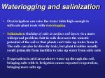 waterlogging and salinization