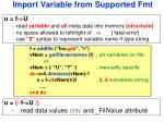 import variable from supported fmt