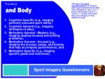 sport imagery questionnaire
