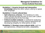 managerial guidelines for cross cultural success