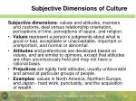 subjective dimensions of culture