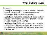 what culture is not