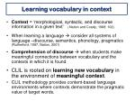 learning vocabulary in context