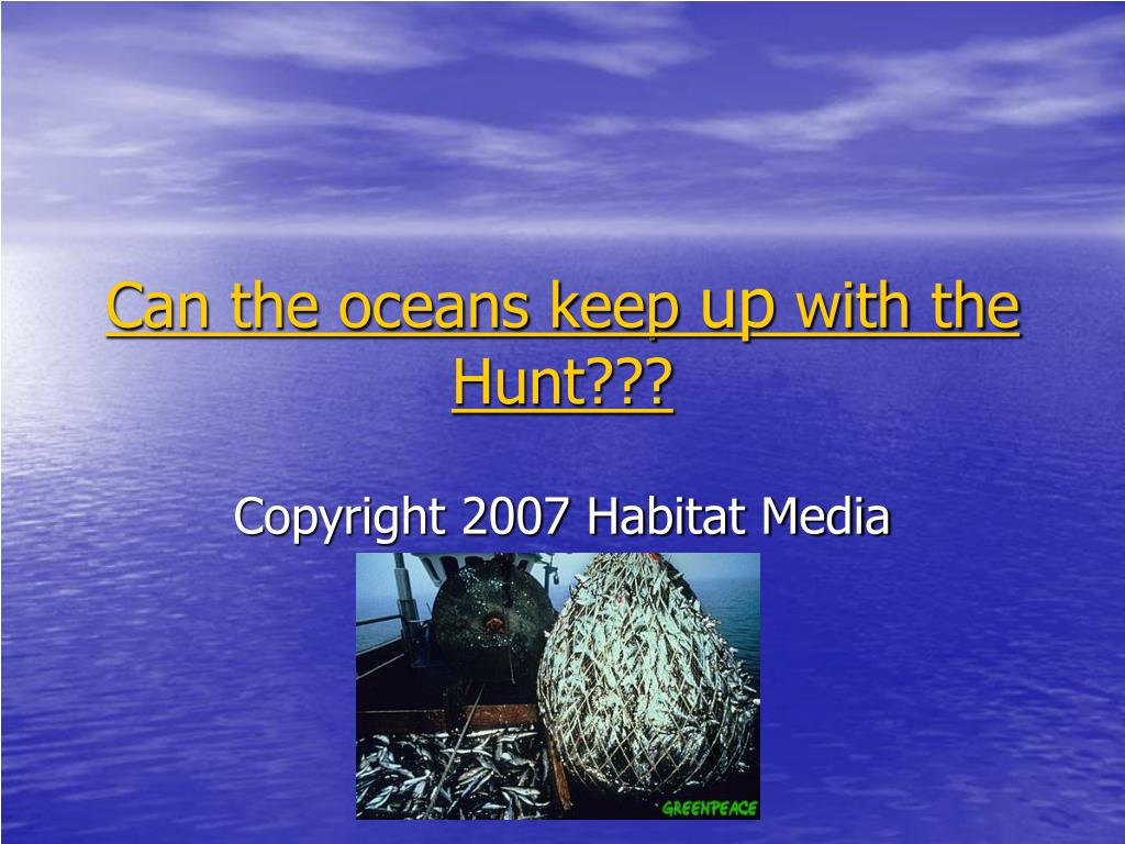 can the oceans keep up with the hunt l.