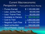 current macroeconomic perspective thoroughbred horse racing