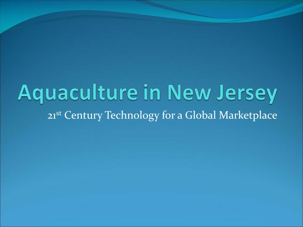 21 st century technology for a global marketplace l.