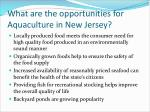 what are the opportunities for aquaculture in new jersey