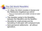 the old world mesolithic