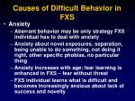 causes of difficult behavior in fxs