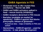 gaba agonists in fxs