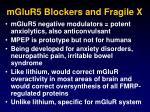 mglur5 blockers and fragile x