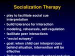 socialization therapy