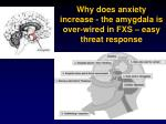 why does anxiety increase the amygdala is over wired in fxs easy threat response