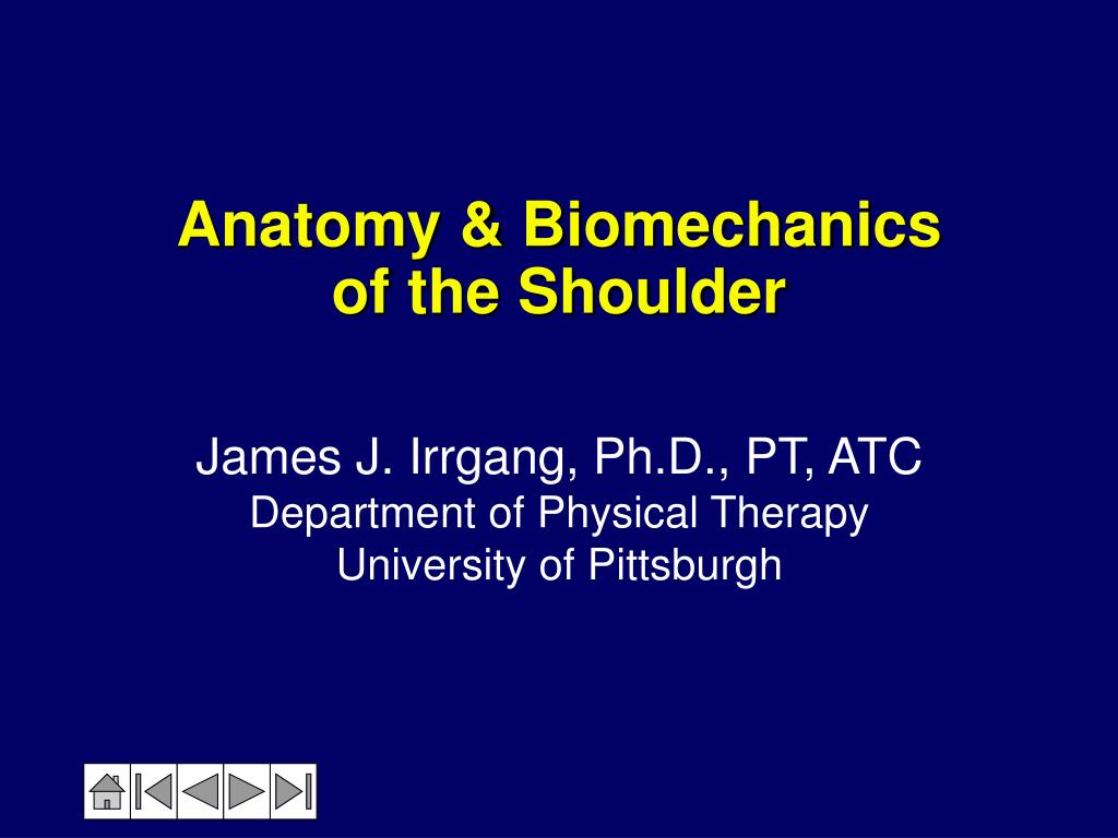 PPT - Anatomy & Biomechanics of the Shoulder PowerPoint Presentation ...