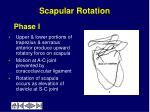 scapular rotation