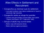 allee effects in settlement and recruitment