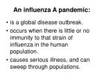 an influenza a pandemic