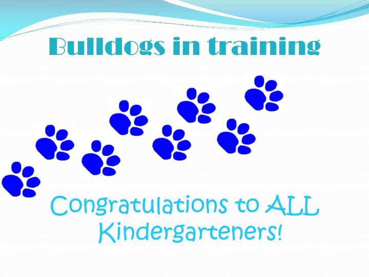 Bulldogs in training