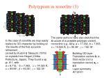 polytypism in xonotlite 3