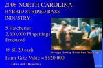 2008 north carolina hybrid striped bass industry16