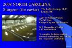 2008 north carolina sturgeon for caviar