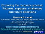 exploring the recovery process patterns supports challenges and future directions