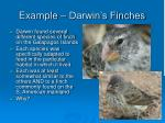 example darwin s finches