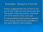 example darwin s finches22