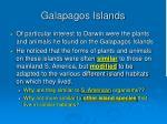 galapagos islands18