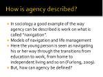 how is agency described