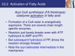 23 2 activation of fatty acids