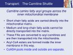 transport the carnitine shuttle