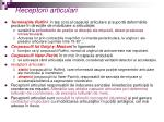 receptorii articulari