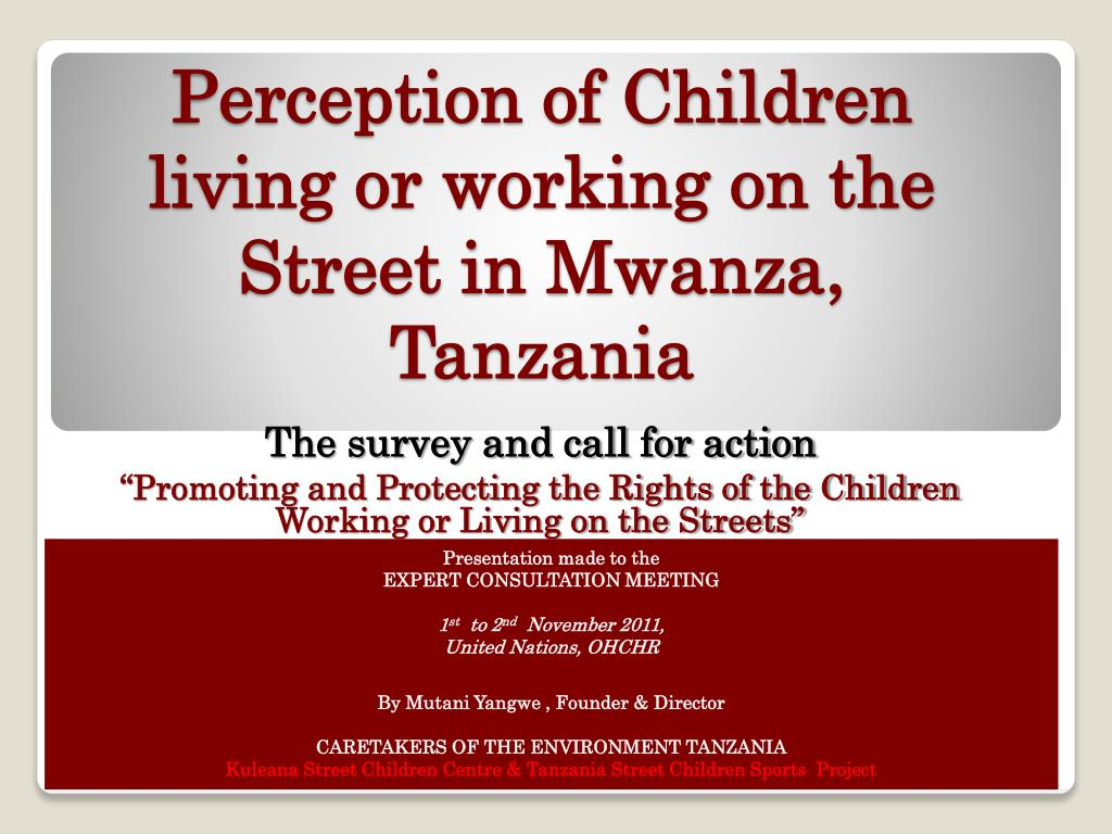 perception of children living or working on the street in mwanza tanzania l.