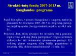strukt rini fond 2007 2013 m sanglaudos programa