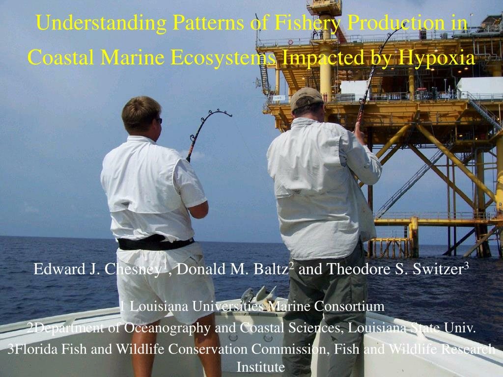 understanding patterns of fishery production in coastal marine ecosystems impacted by hypoxia l.