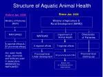 structure of aquatic animal health