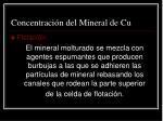 concentraci n del mineral de cu