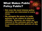 what makes public policy public23