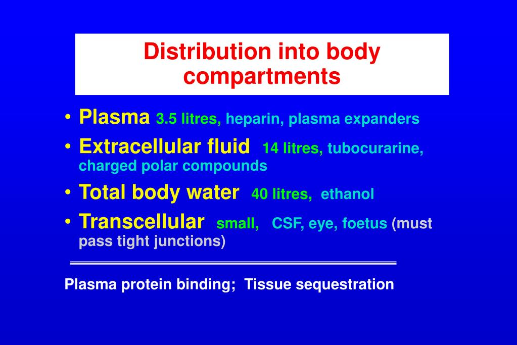 Distribution into body compartments