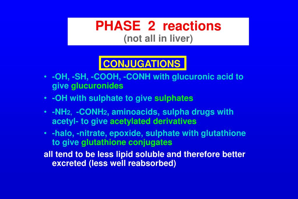 PHASE  2  reactions