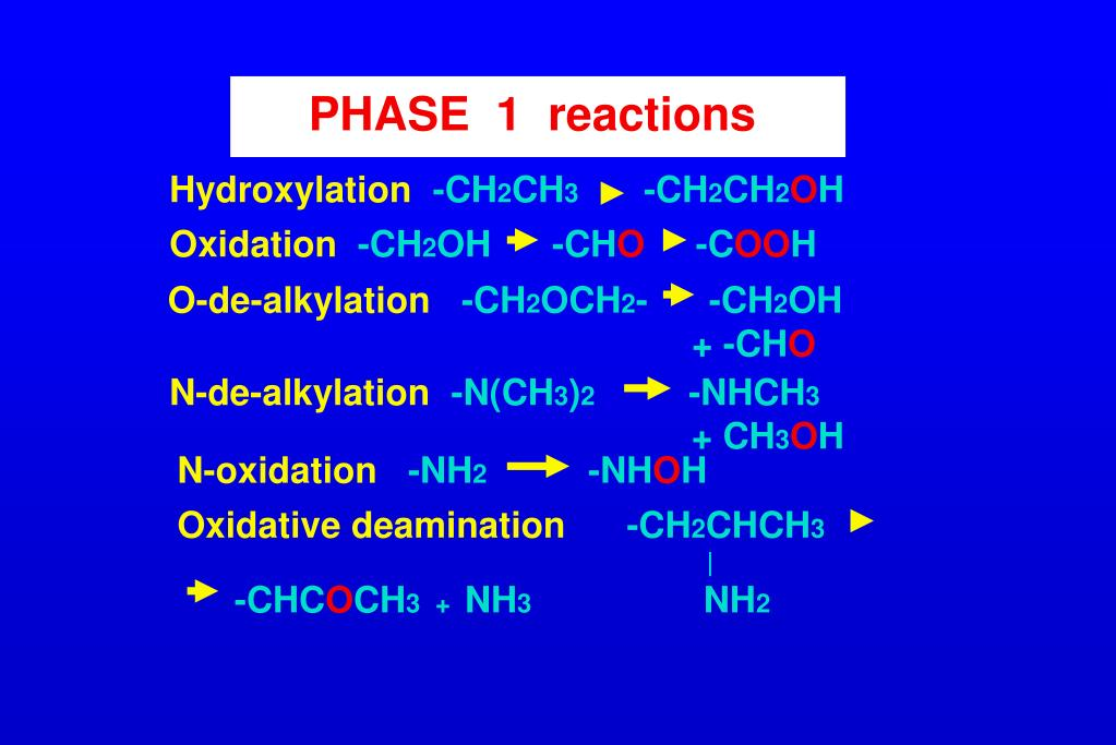 PHASE  1  reactions