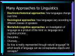 many approaches to linguistics