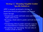 strategy 2 mounting tangible gender specific initiatives