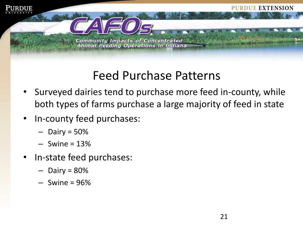 Feed Purchase Patterns