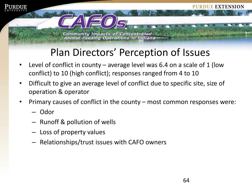 Plan Directors' Perception of Issues