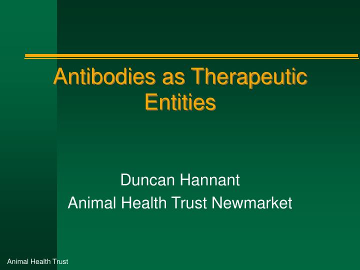antibodies as therapeutic entities n.