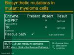 biosynthetic mutations in mutant myeloma cells