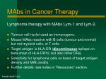 mabs in cancer therapy2